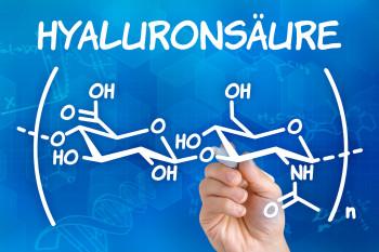 Hyaluronsäure Fachliteratur wissenschaftliche Publikation
